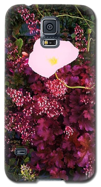 Galaxy S5 Case featuring the photograph Snow White And Friends by Suzanne McKay
