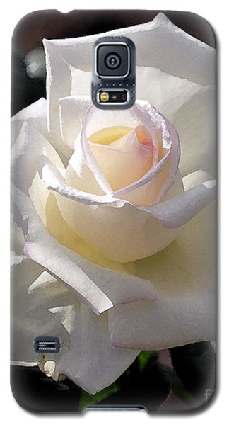Snow White Rose Galaxy S5 Case by Kirt Tisdale