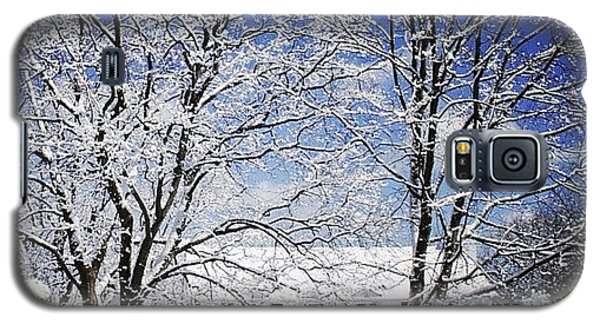 Sunny Galaxy S5 Case - #snow #winter #house #home #trees #tree by Jill Battaglia