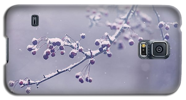 Branch Galaxy S5 Case - Snowberries by Carrie Ann Grippo-Pike