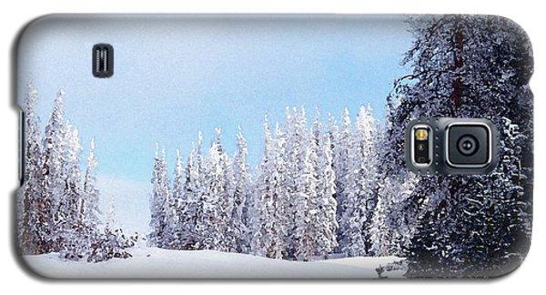 Snowbound Galaxy S5 Case