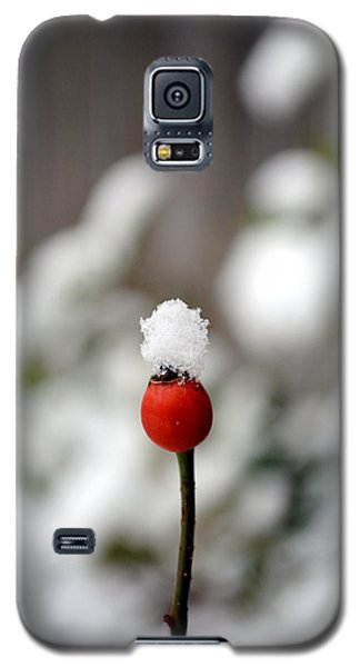 Galaxy S5 Case featuring the photograph Snowcap by Kelly Nowak