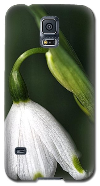 Galaxy S5 Case featuring the photograph Snowdrop by Joy Watson