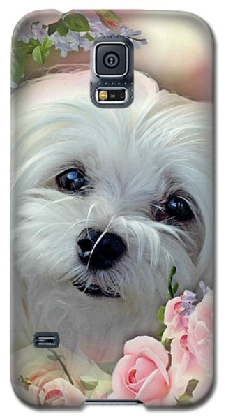 Galaxy S5 Case featuring the photograph Snowdrop The Maltese by Morag Bates