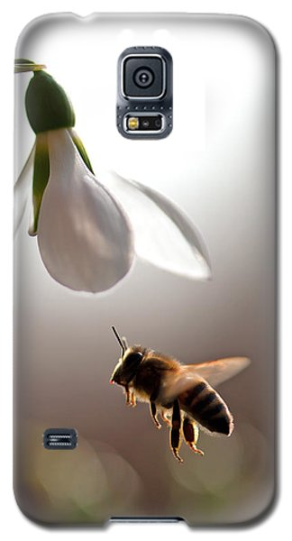 Snowdrops And The Bee Galaxy S5 Case by Torbjorn Swenelius