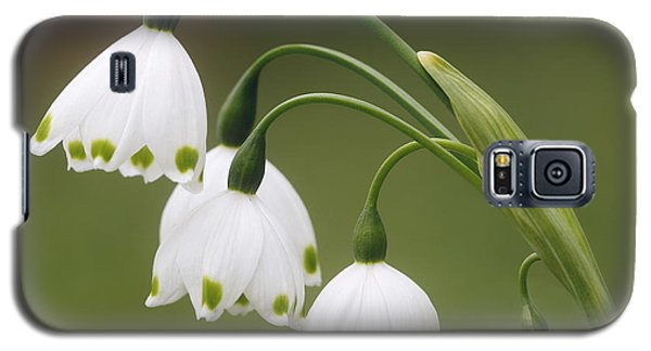 Snowdrops Galaxy S5 Case