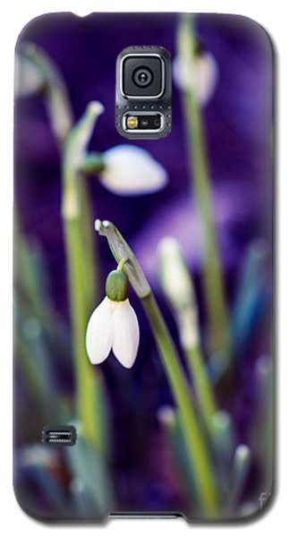 Snowdrops - One For All And All For One Galaxy S5 Case
