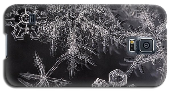 Snowflakes Galaxy S5 Case by Eunice Gibb