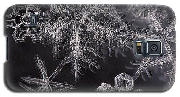 Snowflakes Galaxy S5 Case