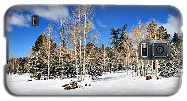 Snowy Aspen Grove Galaxy S5 Case