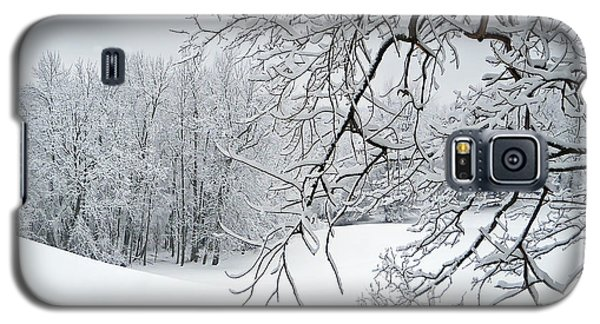 Snowy Branches Galaxy S5 Case by Aimee L Maher Photography and Art Visit ALMGallerydotcom