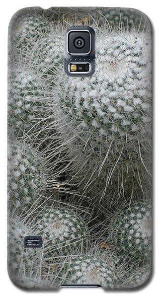 Snowy Cactus  Galaxy S5 Case
