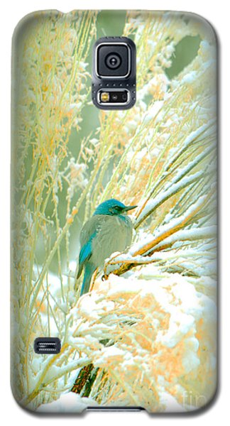 Snowy Chamisa In High Mountains Galaxy S5 Case by Susanne Still