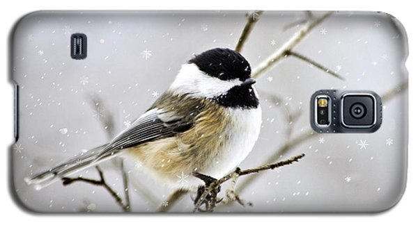 Snowy Chickadee Bird Galaxy S5 Case by Christina Rollo