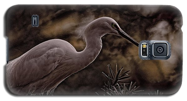 Galaxy S5 Case featuring the photograph Snowy Egret 002 by Travis Burgess