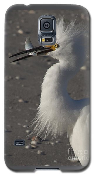 Snowy Egret Fishing Galaxy S5 Case