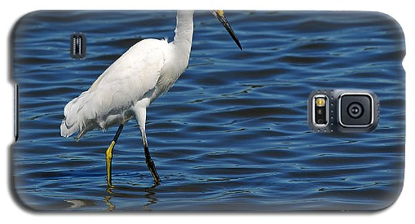 Galaxy S5 Case featuring the photograph Snowy Egret Foraging by Olivia Hardwicke