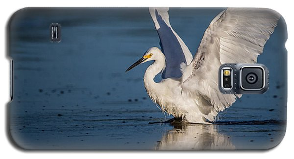 Snowy Egret Frolicking In The Water Galaxy S5 Case