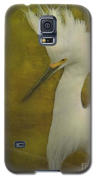Snowy Egret In Breeding Plumage Galaxy S5 Case