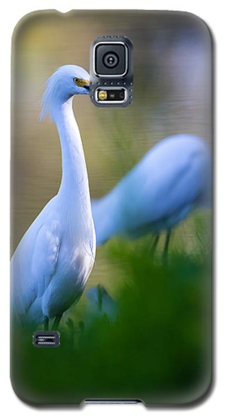 Snowy Egret On A Lush Green Foreground Galaxy S5 Case