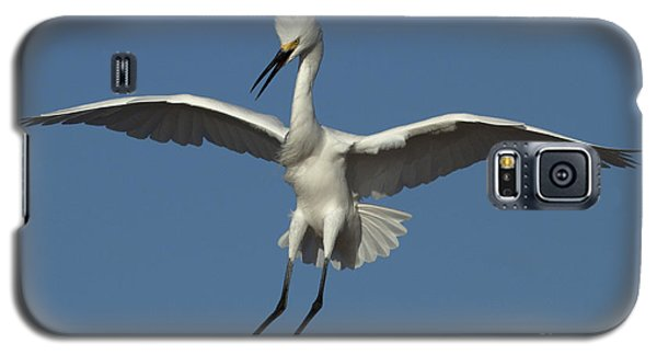 Galaxy S5 Case featuring the photograph Snowy Egret Photo by Meg Rousher