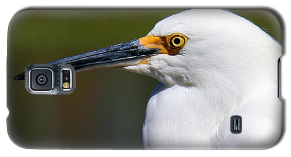Galaxy S5 Case featuring the photograph Snowy Egret Portrait by Bob and Jan Shriner