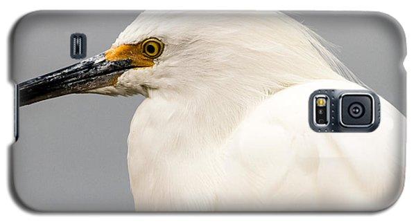 Snowy Egret Profile Galaxy S5 Case