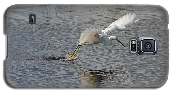Galaxy S5 Case featuring the photograph Snowy Egret Wind Sailing by John M Bailey
