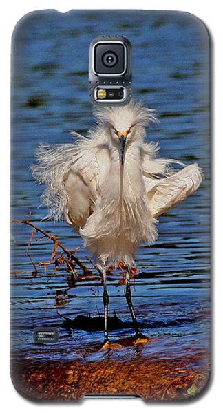 Snowy Egret With Yellow Feet Galaxy S5 Case by Tom Janca