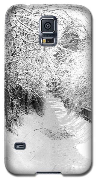 Snowy Lane Galaxy S5 Case
