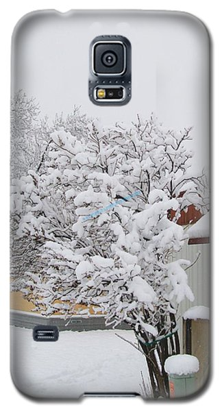 Galaxy S5 Case featuring the photograph Snowy Lilac by Jewel Hengen