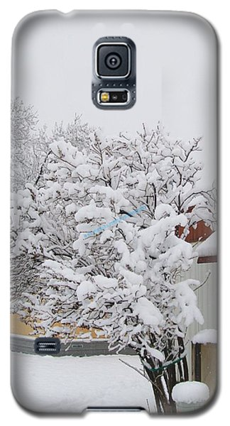 Snowy Lilac Galaxy S5 Case