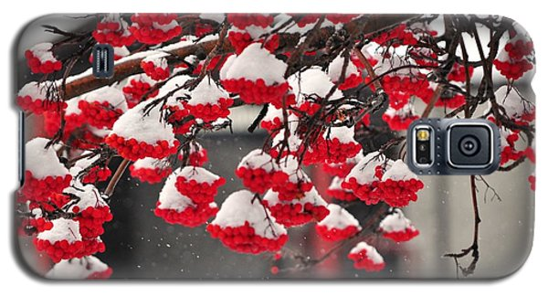 Galaxy S5 Case featuring the photograph Snowy Mountain Ash Berries by Fran Riley