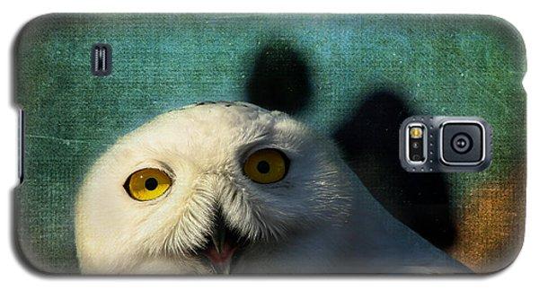 Snowy Owl Galaxy S5 Case by Denyse Duhaime