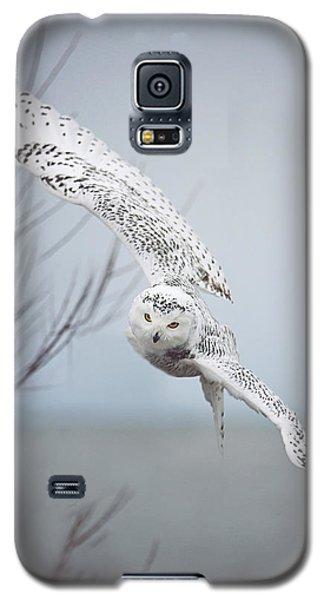 Snowy Owl In Flight Galaxy S5 Case by Carrie Ann Grippo-Pike
