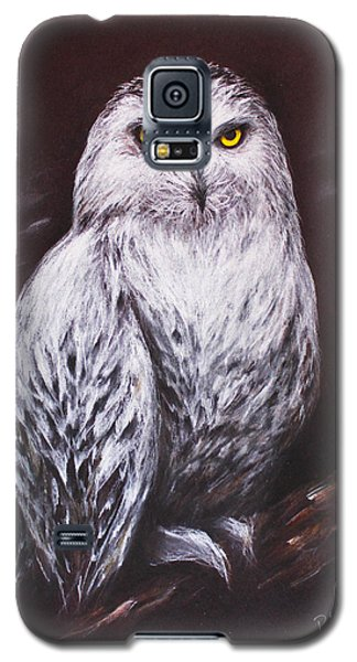 Snowy Owl In The Night Galaxy S5 Case