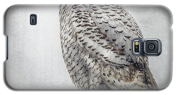 Galaxy S5 Case featuring the photograph Snowy Owl In The Rain by Constantine Gregory