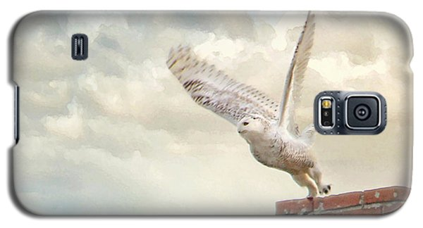Galaxy S5 Case featuring the photograph Snowy Owl by Karen Lynch