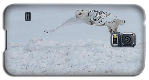 Snowy Owl #1/3 Galaxy S5 Case by Patti Deters