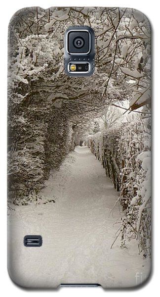 Snowy Path Galaxy S5 Case by Vicki Spindler