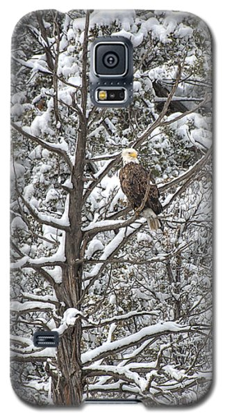 Galaxy S5 Case featuring the photograph Snowy Perch Bald Eagle by Britt Runyon