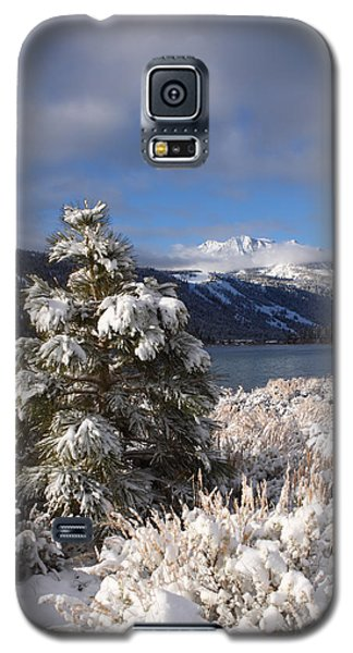 Galaxy S5 Case featuring the photograph Snowy Pine  by Duncan Selby