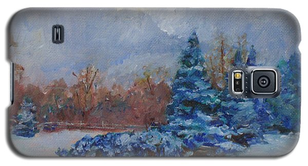Snowy Scene Galaxy S5 Case