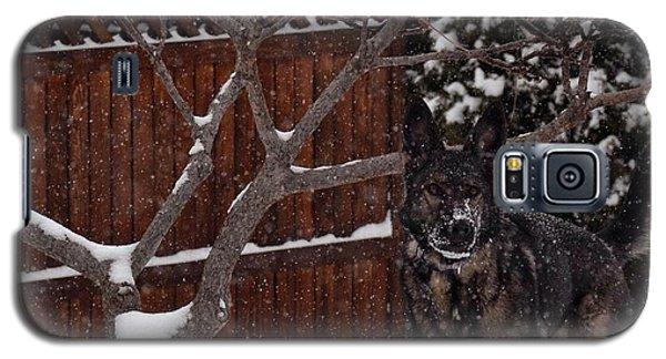 Snowy Shepherd Galaxy S5 Case