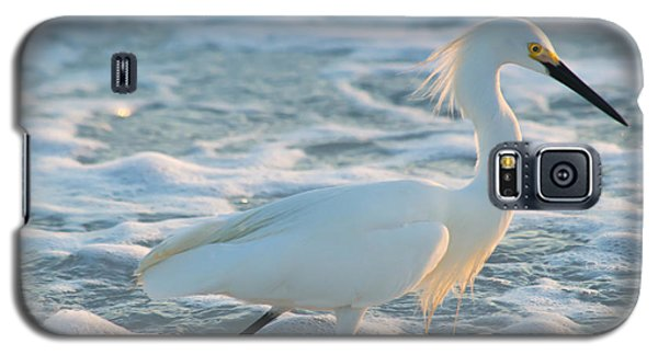 Snowy Siesta Key Sunset Galaxy S5 Case