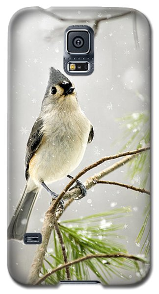 Snowy Songbird Galaxy S5 Case by Christina Rollo
