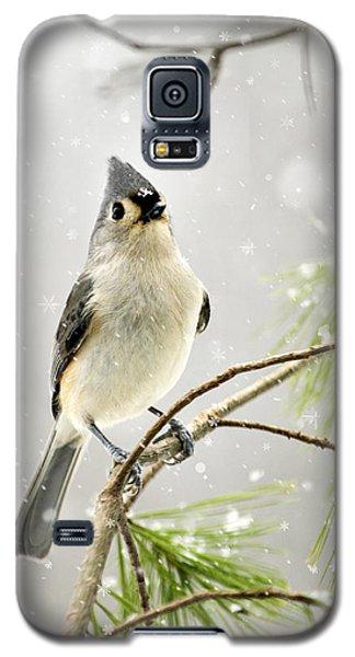 Snowy Songbird Galaxy S5 Case