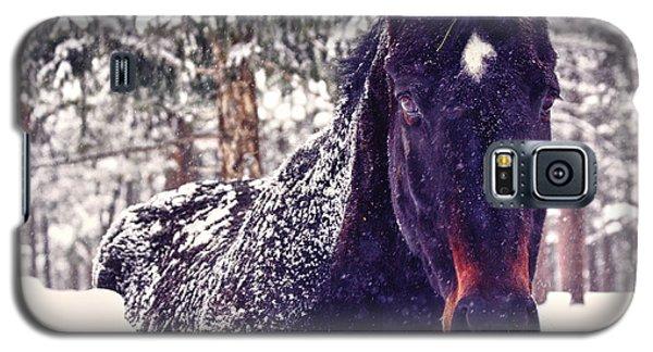 Snowy Spirit Galaxy S5 Case