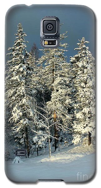 Galaxy S5 Case featuring the painting Snowy Sunrise by Jesslyn Fraser