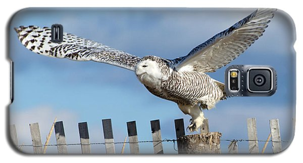 Snowy Takeoff Galaxy S5 Case by Stephen Flint